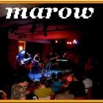 marow+leniwcie 019
