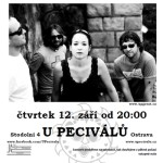 upgreat-pecos2013-flyer