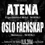 Atena Tour chd